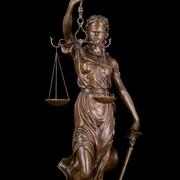 Профессионал - адвокат предоставляет услуги.